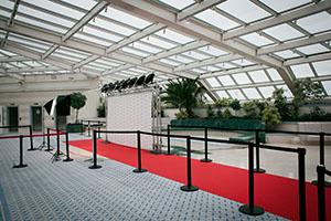 Poteaux de guidage espace VIP photos